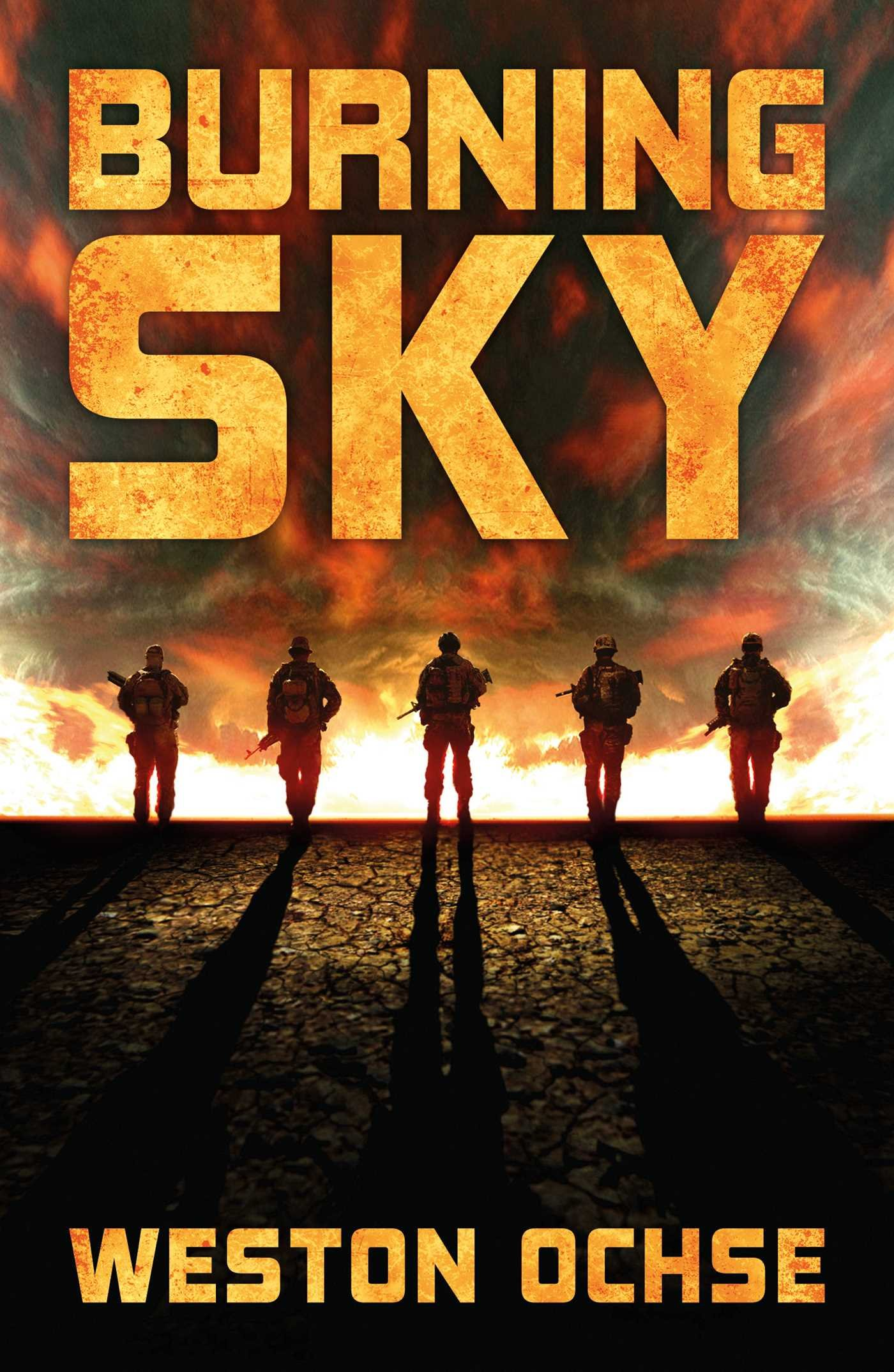 MM: Okay, let's talk about your new novel Burning Sky. What can you tell us  about it? Sell it to the folks out there? What was the writing process like  for ...